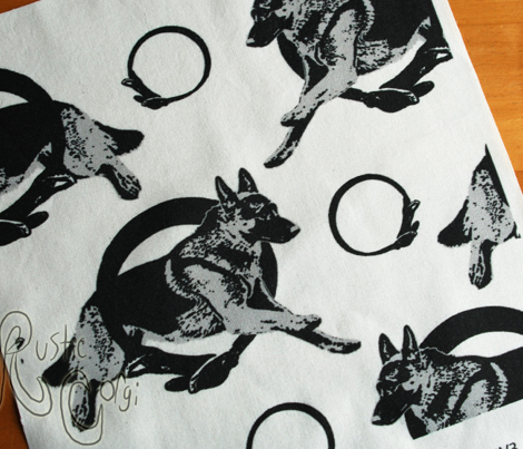 Collared leaping German Shepherd dog portraits - gray