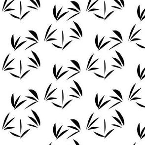 Black Oriental Tussocks on White