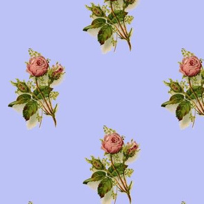 Vintage Pink Roses on Pale Blue