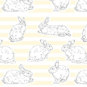 Yellow Bunny Pattern