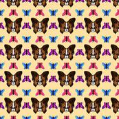 papillonpattern