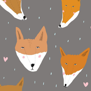 Sweet foxes