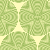 concentric circles in green tea