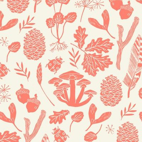 nature walk // peach and cream baby autumn fall pinecones leaves nature outdoors leaf