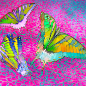 Ethereal Flights, In Pink