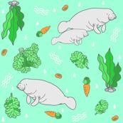 Manatee with Vegetation