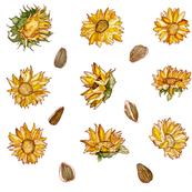 Sunflowers (Large Pattern)