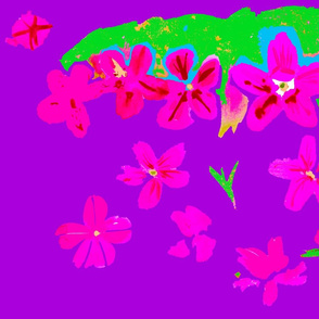 cestlaviv_test6_cherry_18x36