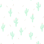 Little cactus with needles