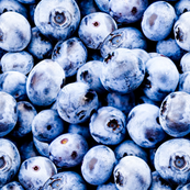 Blueberry large scale