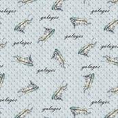 Galagos