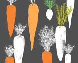 Carrot_merged_spot_thumb