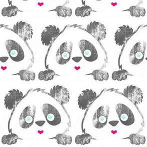 Panda Love Grey Grunge