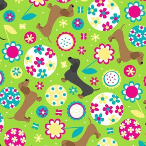 Dachsund Garden Party (Green)
