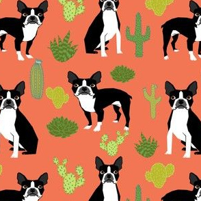 boston terrier dogs cactus orange summer kids trendy cacti cactuses dog dogs desert arizona trendy dog print