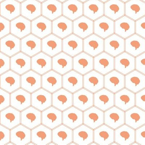 Honeycomb | Dark Salmon