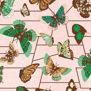 butterfly_chart_emerald