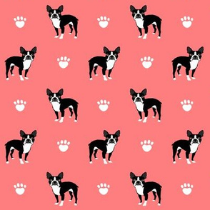 boston terrier dog dogs nursery baby coral paws paw print kids baby