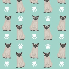 siamese cat mint cute cat paws mint cats kitty kitten cute cats