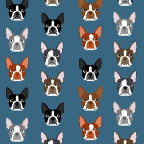 boston terriers blue faces cute dogs dog pet dog fabrics for dog lovers
