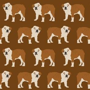 english bulldog brown dogs dog pet dog cute dog sweet pets bulldog owner