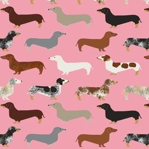dachshund doxie wiener dog sausage dog weiner dogs cute pet dog fabric