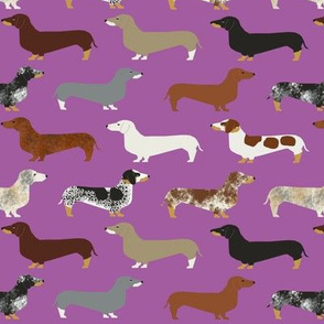 doxie // dachshunds purple dogs pet dog dog fabric cute wiener dog sausage dog fabrics