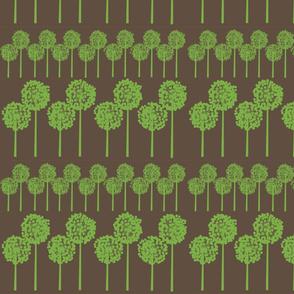 greenseedheads on brown
