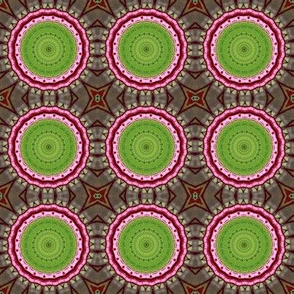Springtime at the Birdefeeder_Kaleidoscope Version 4