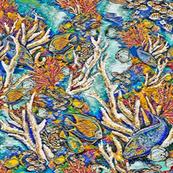 Staghorn Reef