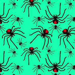 Redback Soup Turquoise