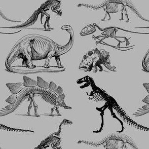 Vintage Museum Skeletons | Dinosaurs on Grey