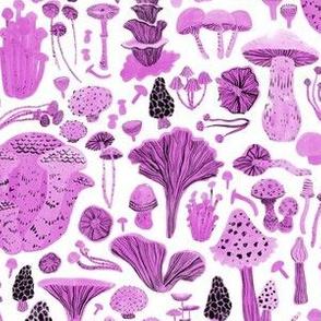 Mushroom bounty in pink