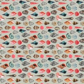 shells // summer beach linen sea ocean