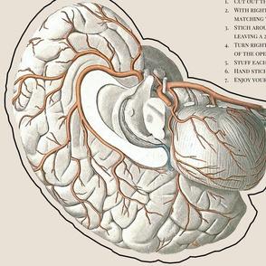 DIY Heart and Brain Pillow