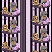 Yorkie - Yorkie Lila loves Lilac Stripes