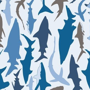 Swimming with Sharks in Blue and Grey