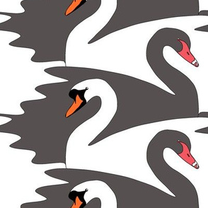 Tesselated Swans