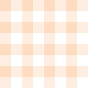 "Pale peach and white 1"" gingham check"