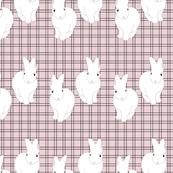 Quadry Rabbits Pink