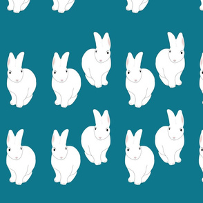 Ocean Rabbits