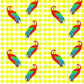 parrots_and_dots
