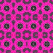 Pink & Gray Daisy Explosion