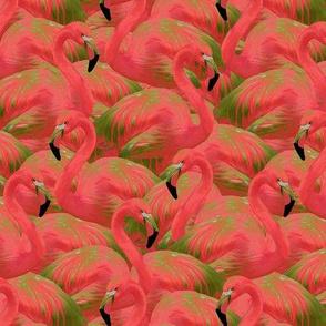 Flamingo Fever in Bright Kiwi (mini scale)