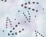 Migrating_birds_tile_with_clouds3_thumb
