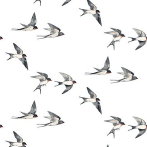 Scattered Tiny Swallows in Flight against a white sky