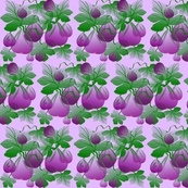 FIG ABSTRACT