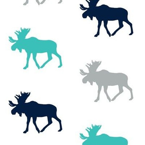 Multi Moose // Surfer's cove