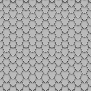 Grey Dragon Scales