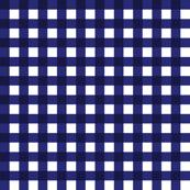 Blue & White Gingham